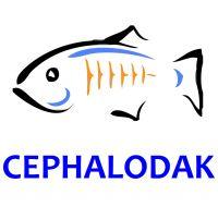 CEPHALODAK